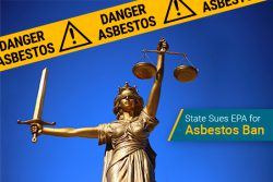 states sue epa for asbestos ban