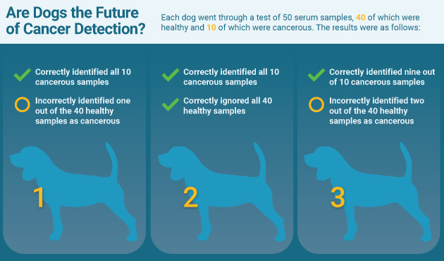 results of the dog-detection cancer study