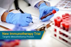 immunotherapy clinical trial targets mesothelin