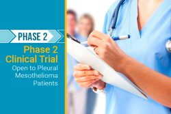 clinical trial for phase 2 pleural mesothelioma patients