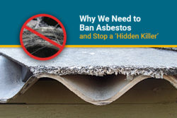 why asbestos ban is needed in the u.S. and globally