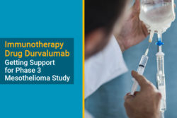 durvalumab mesothelioma clinical trial study improves survival