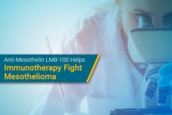 researching anti-mesothelin drug for mesothelioma