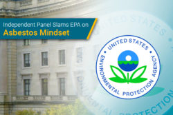 EPA criticized by panel for asbestos evaluation