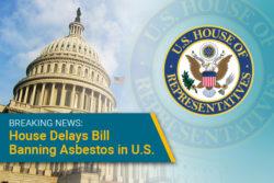 House delays vote to ban asbestos