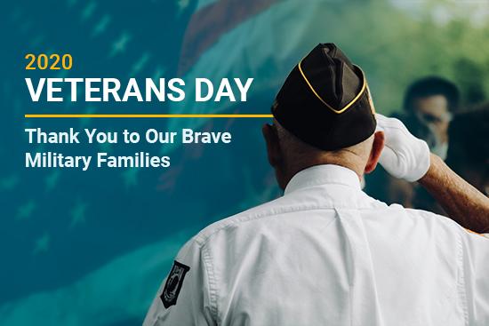 Veterans Day 2020 salute
