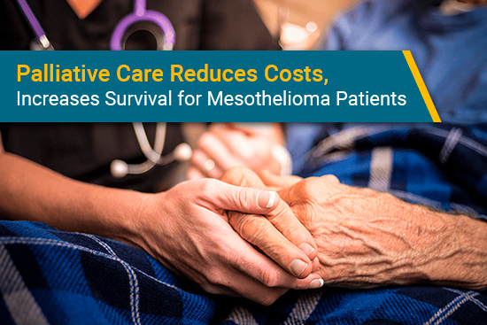 palliative care for mesothelioma reduces costs