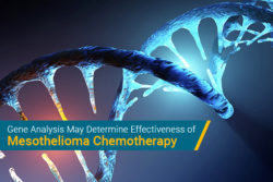 gene expression in mesothelioma may predict chemotherapy resistance