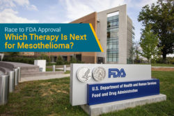 next FDA approval for mesothelioma
