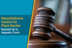 Appeals Court defends mesothelioma verdict for plant worker case
